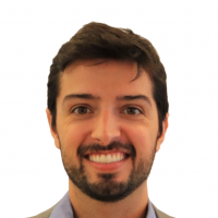 Roberto Ferreira Da Cunha - Director - Berkeley Research Group, Energy and Climate South America