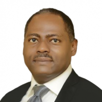 Ed Ubong - President - Nigerian Gas Association