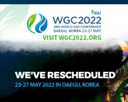 WGC2022_Generic_Event_Banners_300x250